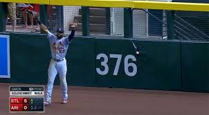 Paul Goldschmidt S Double Got Stuck In The Chase Field Fence Which May Be Eating Things Now Mlb Com