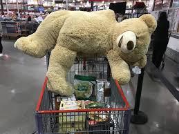 why teddy bears make a horrible