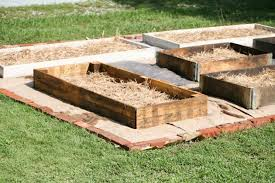 raised beds ly from pallet wood