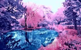 hd pink lake wallpaper free