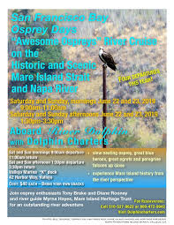 Awesome Ospreys Napa River Boat Trip - Vallejo Arts & Entertainment