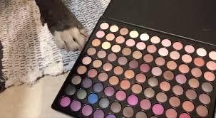 makeup tutorial is going viral