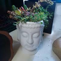 large white ceramic plant pot nz