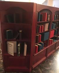 barbie homemade bookcase with books