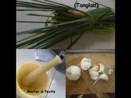 garlic as mosquito repellent