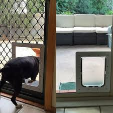 large dog door in glass sliding glass