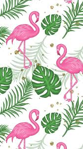 iphone wallpaper bird flamingo pink