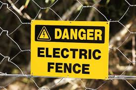 One Bar S Shocking Way To Keep Customers At A Safe Distance An Electric Fence