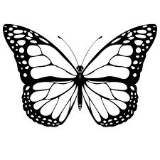 Vlinder Kleurplaten Afbeeldingen Vlinder Kleurplaten Plaatjes En