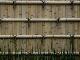 7 Types Of Fencing For Your Yard Or Garden Dig This Design