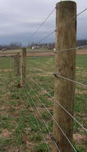 High Tensile Fencing In A Field High Tensile Fence Horse Fencing Fence