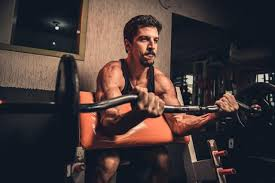 biceps workout routine for m free