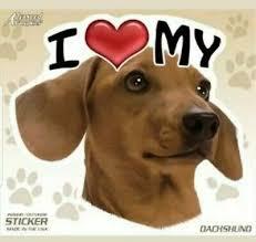 I Love My Red Dachshund Dog 4 Car Truck Home Vinyl Sticker Decal Pet Gift Usa 4 99 Picclick