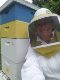 What's the Buzz About Bees? | Asbury Woods