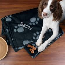 perfect personalised pet gifts