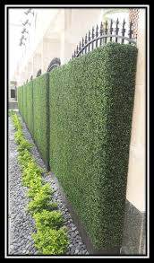 Boxwood Brothers Artificial Boxwood Hedge Panels As A Privacy Fence At An Office Complex Hedges Landscaping Backyard Landscaping Garden Hedges