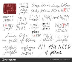 lettering phrases overlays set quotes home plants urbun jungle