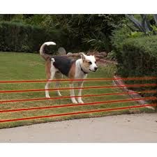 High Tech Pet Humane Contain 50 Acre Multi Function In Ground Ultra Electronic Dog Fence X 10 The Home Depot