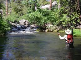 cool fly fishing puter wallpapers