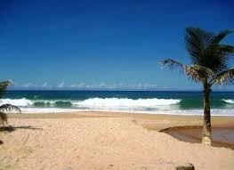 foto de frente areia mar e coqueiros
