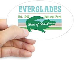 Amazon Com Cafepress Everglades National Park Alligator Decal Sticker Oval Bumper Sticker Euro Oval Car Decal Home Kitchen
