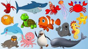 Dạy bé các con vật biển bằng tiếng anh (Có hình ảnh)