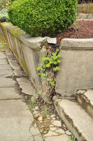 retaining wall failure 101 and how to