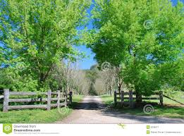 Country Driveway Stock Image Image Of Road Wooden Scenery 3236917