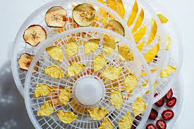 dehydrate fruit with a dehydrator