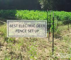 Best Electric Deer Fence Set Up