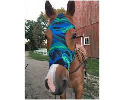 face mask for horses are perfect to