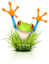 Little Tree Frog On Grass Wall Decal Pixers We Live To Change
