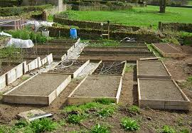 how to build a raised bed home grown