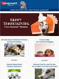 Havahart Wireless Happy Thanksgiving 5 Tips To Stop Begging At The Table Milled