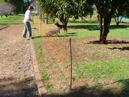 Electric Fence For Dogs Sheep Goats And Other Small Animals Portable 95cm H X 50 Mts Long W A Poultry Equipment Coast To Coast Vermin Traps