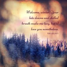 cozy quotes in celebration of the winter solstice winter