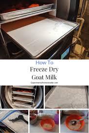 how to freeze dry goat milk