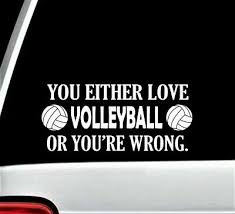 Volleyball Funny Novelty Decal Sticker For Car Window Bg305 Outdoor Sports Ebay