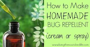 14 natural homemade mosquito repellents