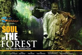 jadav payeng forest - Google Search   Trees to plant, Cat holidays, Forest