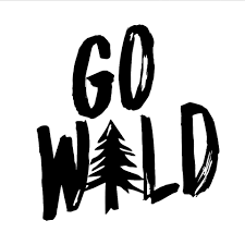 Go Wild Text Nature Vinyl Car Decal Hiking Car Decals Window Adventure Bumper Car Sticker Removable L599 Car Stickers Aliexpress
