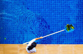 eliminate algae in your pool using a