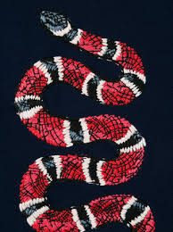 gucci snake wallpaper on wallpapersafari