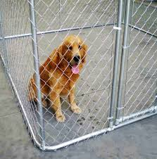Large Pets Running Used Chain Link Dog Crates Steel Pipe Framework Dog Fence Kennel Sold By Factory Buy Galvanized Chain Link Dog Crates Hot Sell Pets Chain Link Fence Kennel With Roof Low