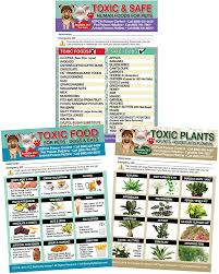 toxic foods poison for pets dogs cats