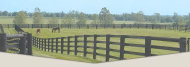 Fencing Centaur