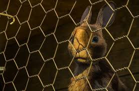 Bbc And Netflix Release Trailer For New Watership Down Movie