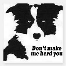 Border Collie Bumper Stickers Car Stickers Decals Amp More Border Collie Collie Bumper Stickers