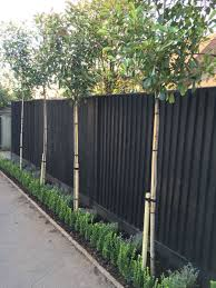 20 Inexpensive Black Fence Ideas For Garden Design Privacy Fence Landscaping Fence Landscaping Privacy Fence Designs