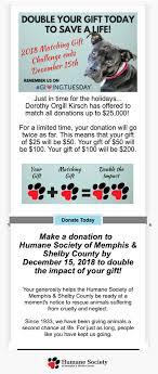 fundraising email exles